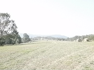 ALPINE PASTURE FOR AIRSTRIP, GOLF COURSE, AND GRAZING