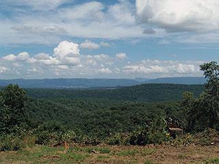 BEYOND CIVILIZATION ALONG NAT'L FOREST TRAIL