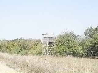 DEER STANDS AND TRAILS THROUGHOUT THE FIELDS, WOODS