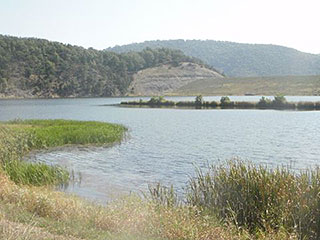 FISH IN FAMOUS TROUT POND AND IN NEARBY 50-ACRE LAKE