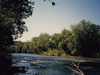 TAKE CANOE ADVENTURES ON SCENIC CACAPON RIVER