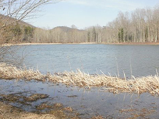 TROUT POND –ONLY NATURAL BODY OF WATER IN W. VA