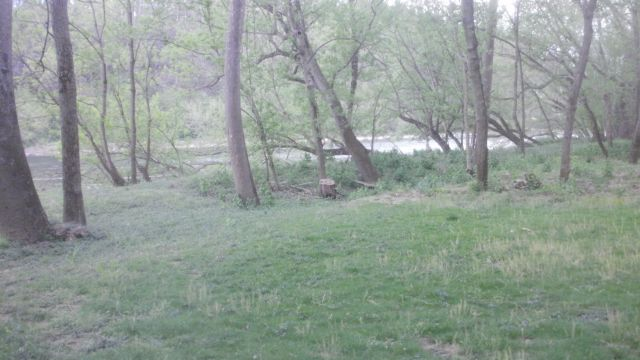BUILD HOME, CABIN IN WOODS W/ VIEWS OF RIVER