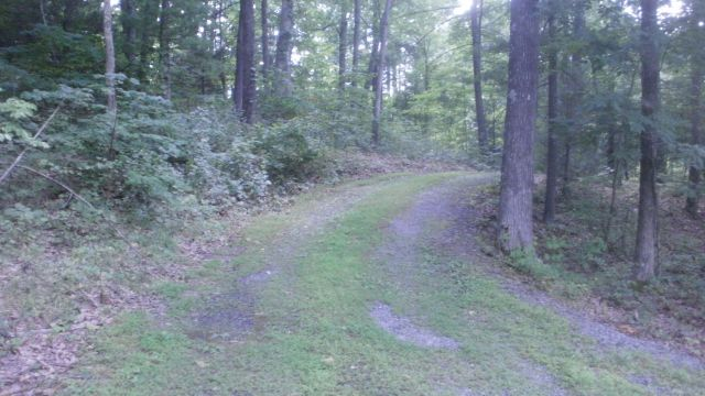 QUIET WOODS. SAFE GATED AREA OF UPSCALE HOMES