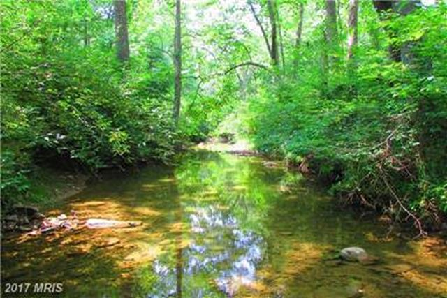 LEVEL LAND FOR CAMPING AND OUTDOOR FUN ALONG STREAM