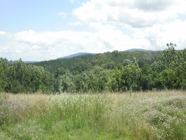 MUCH SOUGHT-AFTER AREA IN THE SHENANDOAH VALLEY